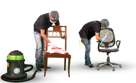 professional cleaner shampooing and scrubbbing chair upholstery using a soft brush