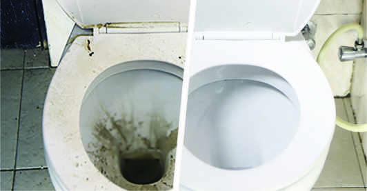 A dirty toilet seat is transformed to a shiny clean one after bathroom deep cleaning