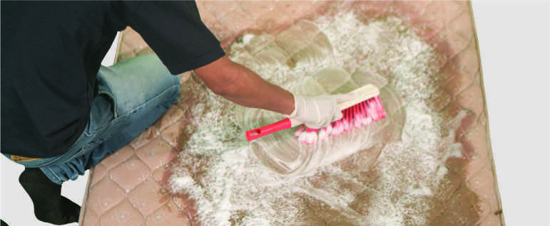 Matress cleaner shampooing and scrubbing the mattress using a sof brush